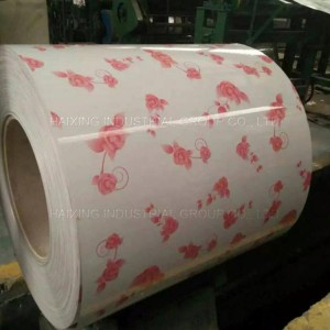 2019 Hot Dipped Galvanized Steel Coil